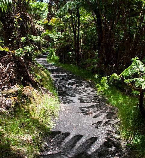 Top 4 des plus belles randonnées à Hawaï
